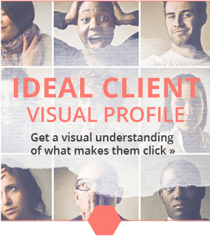 idealclientvisualprofile